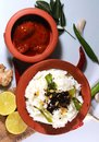 Traditional curd rise with lemon pickle and ingredients Royalty Free Stock Photo