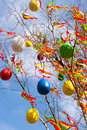 Traditional Czech easter decoration - decorated birch tree Betula pendula with colorful ribbons and painted eggs - rural symbol