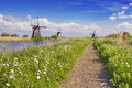 Traditional Dutch windmills on a sunny day at the Kinderdijk Royalty Free Stock Photo