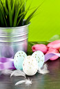 Traditional easter egg decoration with tulips and ribbo Royalty Free Stock Image