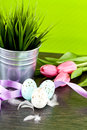 Traditional easter egg decoration with tulips and ribbo Royalty Free Stock Photography