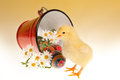 Traditional easter eggs russian and yellow newborn chick Stock Image