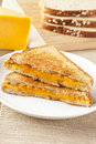 Traditional Homemade Grilled Cheese Sandwich Royalty Free Stock Photo