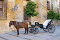 Traditional Horse and Cart Stock Photos