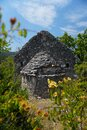 Traditional Istrian half-ruined trullo, a dry stone hut with a conical roof surrounded by nature Royalty Free Stock Photo