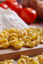 Traditional Italian pasta Royalty Free Stock Image