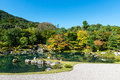 Traditional Japanese garden in early autumn, Kyoto Royalty Free Stock Photo