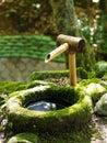 Traditional japanese water fountain covered in moss found at the kasuga taisha shrine in nara japan Royalty Free Stock Photos