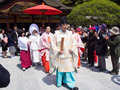 Traditional japanese wedding ceremony fukuoka april of in dazaifu shrine is a april in fukuoka japan Royalty Free Stock Photo