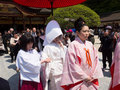 Traditional japanese wedding ceremony fukuoka april of in dazaifu shrine is a april in fukuoka japan Royalty Free Stock Photos