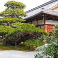 Traditional landscaped japanese garden detail in Japan Royalty Free Stock Photo