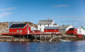 Traditional norwegian village with red and white wooden houses on rocky coast Royalty Free Stock Photography