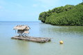 Traditional palauan wooden boat blue sea green bush island behind Royalty Free Stock Photography