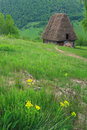 Traditional romanian cottage Royalty Free Stock Image