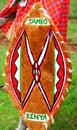 Traditional shield of Masai Royalty Free Stock Photos