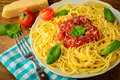 Traditional spaghetti pasta meal with tomato sauce and basil Royalty Free Stock Photo