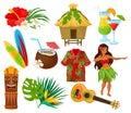 Traditional symbols of Hawaiian culture set, hibiscus flower, bungalow, surfboard, tiki tribal mask, ukulele, exotic Royalty Free Stock Photo