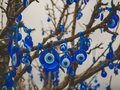 stock image of  Traditional Turkish amulets - Nazar boncuk or Fatima Eye hang on the branches of a wishes tree