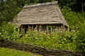 Traditional wooden house with a garden Royalty Free Stock Photo