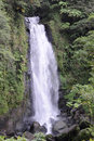 Trafalgar waterfall, Dominica Royalty Free Stock Photo