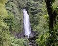 Trafalgar waterfall, Dominica Royalty Free Stock Photo