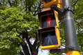 Traffic light buenos aires Royalty Free Stock Photos