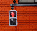 Traffic lights for pedestrian showing the red Royalty Free Stock Photo