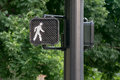Traffic signal Royalty Free Stock Photo