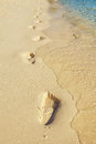 Trail on beach feet sand with clean bluish water Royalty Free Stock Photo