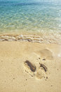 Trail on beach feet sand with clean bluish water Stock Photography