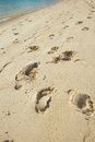 Trail on beach feet sand with clean bluish water Royalty Free Stock Photos