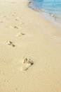 Trail on beach feet sand with clean bluish water Stock Images
