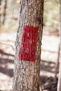 Trail blaze red marking the way on a park Stock Photo