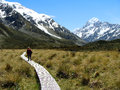 On the trail an elderly man to mount cook Royalty Free Stock Image