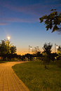 Trail in evening park in summer Royalty Free Stock Photo