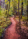 A Trail in Fall Colors Stock Photos
