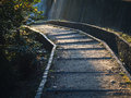 Trail Pathway Trekking step with sun light Royalty Free Stock Photo