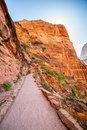 Trail through red rocks in Zion National Park Royalty Free Stock Photo