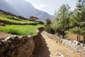 Trail by rice terraces the to everest leads next to bright green Stock Photos