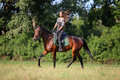 Trail riding in the summer park Royalty Free Stock Photo