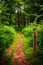 Trail and trail marker post in shenandoah national park virginia Royalty Free Stock Photos