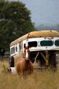 Trailer and Horse in the field Royalty Free Stock Photo