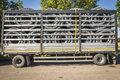 Trailer truck full of corrugated plastic pipes Royalty Free Stock Photo