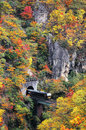 A train coming out of a tunnel onto a bridge over Naruko Gorge with colorful autumn foliage Royalty Free Stock Photo
