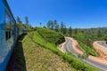 Train among tea plantations Royalty Free Stock Photo