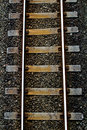 Train track photo is taken at central auckland new zealand Stock Image