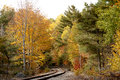 Train tracks through fall color Royalty Free Stock Photo