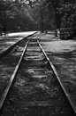 Train tracks isolated black and white Royalty Free Stock Photo