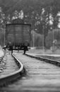 Train wagon birkenau the last on the auschwitz camp Stock Images