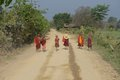 Trainee child monks near inle lake walking along a dusty road Royalty Free Stock Images